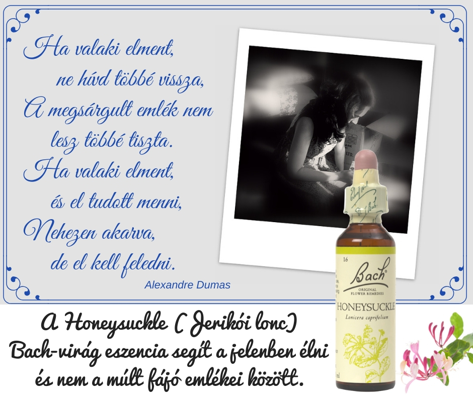 Honeysuckle / Jerikói lonc eszencia